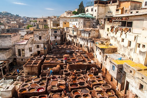 7 Things To Do When Vacationing In Morocco - Tanneries in Fez